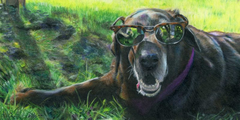 """SOLD - """"Shades"""", colored pencil"""