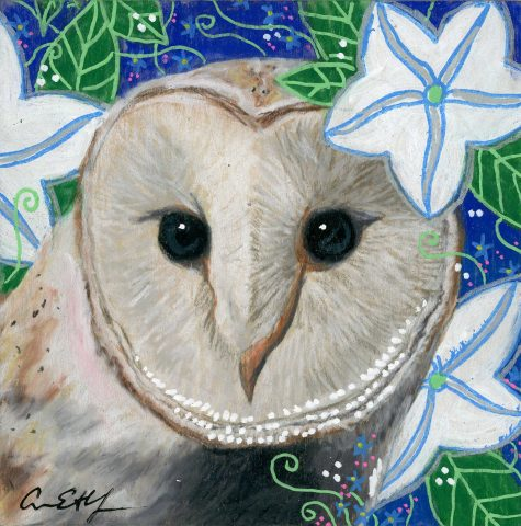 """Barn Owl in Moon Flowers"", 4"" x4"", mixed media"
