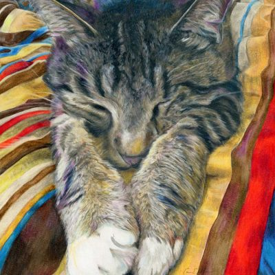 """SOLD - """"Mellow"""", 11"""" x 14"""", colored pencil"""