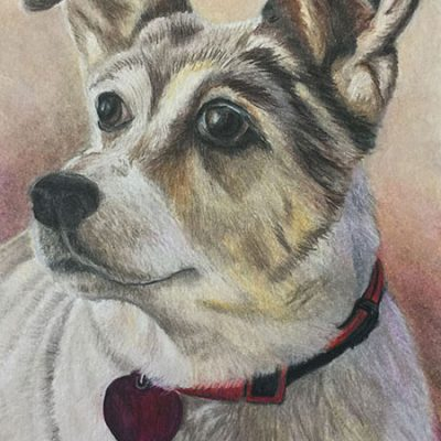 "SOLD - ""Molly"", 5"" x 7"", colored pencil"
