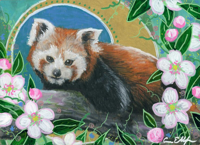 """Red Panda and Apple Blossoms"", 7"" x 5"", mixed media"