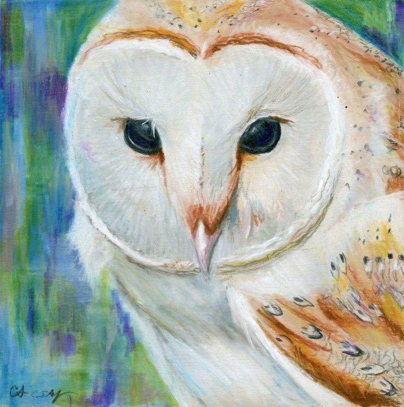 """SOLD - """"The Stare"""", 6"""" x 6"""", mixed media"""