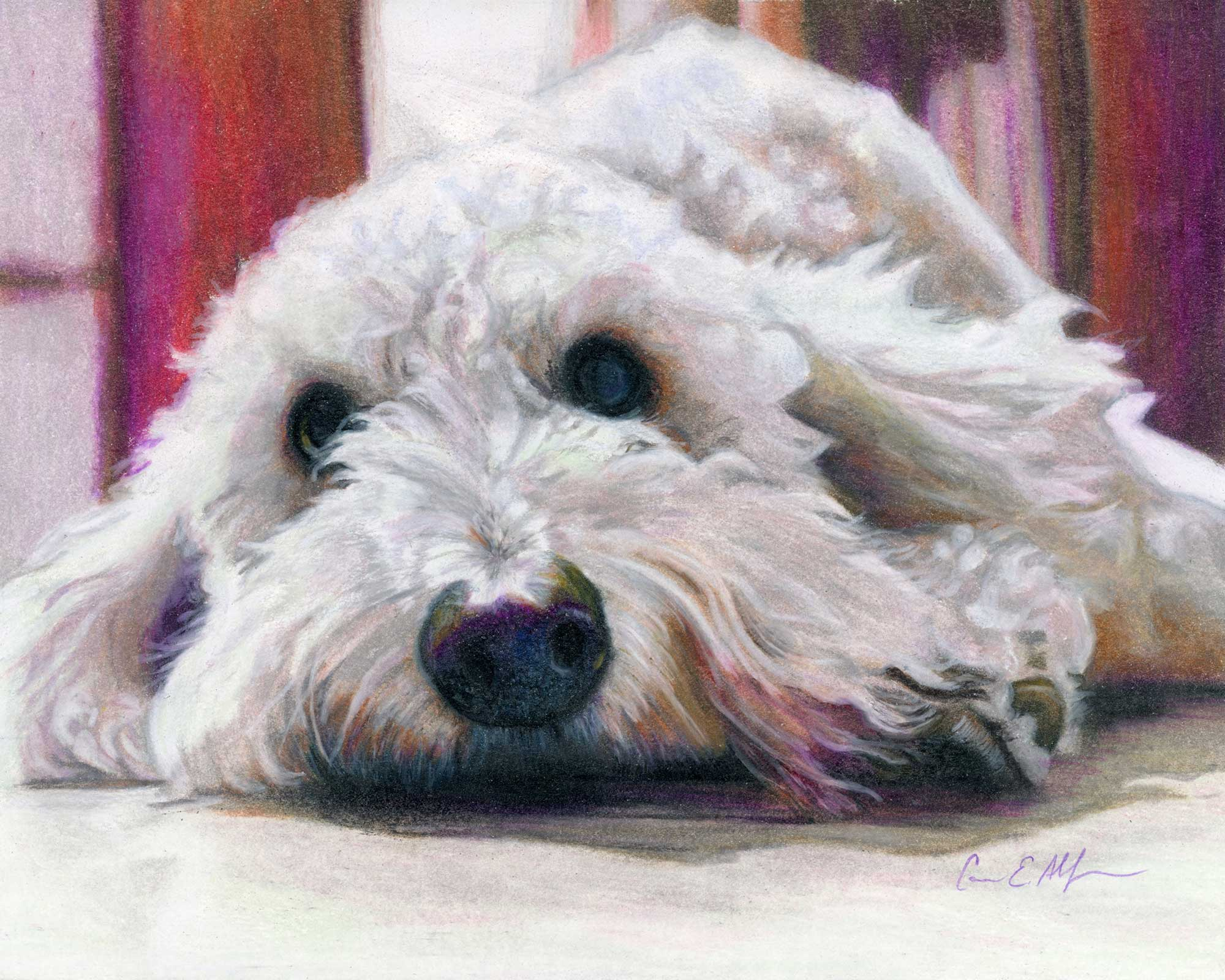 """SOLD - """"Those Eyes"""", 8"""" x 10"""" colored pencil"""