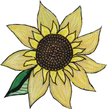 sunflower-leaf