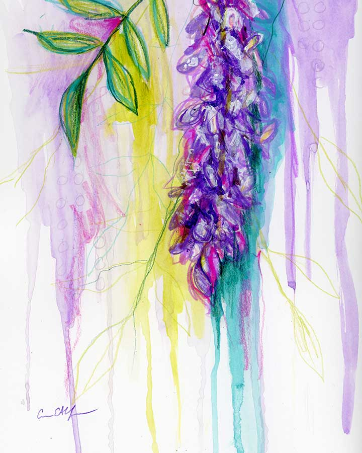 wisteria-weeps