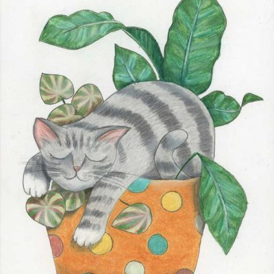 """Zonked, 8"""" x 10"""", colored pencil"""